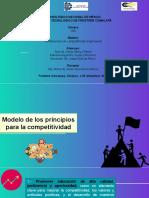 Modelo de Los 10 Principios