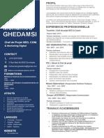 curriculum-vitae-M-GHEDAMSI