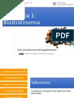 Andrea Baucon, Corso Di Paleontologia - Lezione 2 - Tafonomia 1 (Biostratinomia)