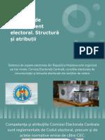 Organele-de-management-electoral (1)