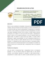 RESUMEN EJECUTIVO TESIS CALIFI. JURIDICA E IMPUTACION (PERCY R. PIZARRO RAMON)