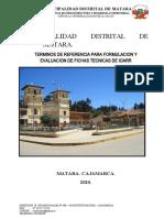 TDR FORMULACION Y EVALUACION FICHAS TECNICAS IOARR