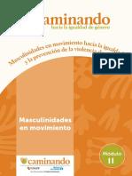 Módulo 2 - MASCULINIDADES