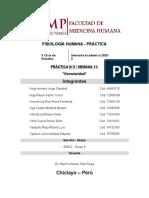 Informe 9 - Semana 11 - Fisiologia Práctica - Grupo 8
