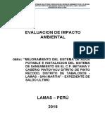 EVALUACION DE IMPACTO AMBIENTAL MODELO