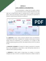 2. COMO LLEGA LA ENERGÍA AL CONSUMIDOR  (cap  II).doc