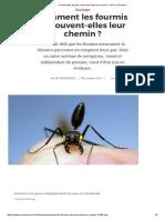 Comment les fourmis retrouvent-elles leur chemin_ _ Pour la Science