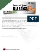 travaux-et-soins-sur-le-bonsaï