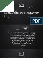 5. Metabolismo energético.pptx