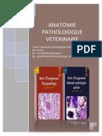 Anatomie Pathologique Vétérinaire - Combinaison