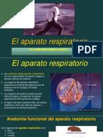 aparato_respiratorio_AFS_II_asg.pdf