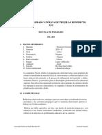 SÍLABO DE TEORÍA Y DESARROLLO CURRICULAR
