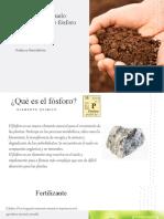 determinacion de fosforo karla santander claudia robles (1)