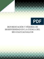 Deforestacion y perdida de biodiversidad_Equipos 2.docx