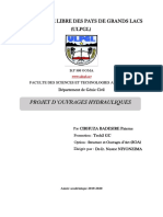 TP_Ouvrages_Hydrauliques_09_03_2020_fin.pdf