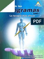 MANUAL HOLOGRAMA I.pdf