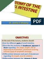 5-ANATOMY OF SMALL INTESTINE.ppt