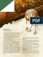 Rasa-Modron_i_predystoria_k_ney.pdf