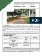 Lozano Herrera G. Eduardo - Ficha de Trabajo Individual - Analisis Paisajistico