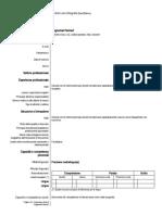 modello-curriculum-vitae-europeo.doc