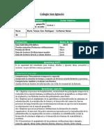 PLANIFICACION PLANTILLA - séptimo 2019