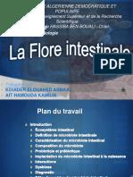 Floreintestinale 150203112217 Conversion Gate01