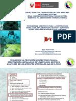 PPT-Directrices en Perú - AA