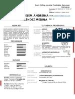 HOJA DE VIDA ZEDELEM 2020.pdf