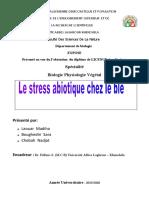 بحث-جامعة-عباس-لغرور-خنشلة (1).docx