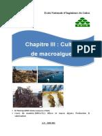 Chapitre III-culture macroalgues