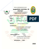 EMPRESA AUDITADA.docx