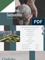 Ciudades Sostenibles (1)