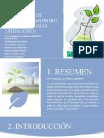 OBTENCIÓN DE BIOETANOL ANHIDRO A PARTIR DE PAJA 2