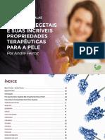 Ebook-Aula-2-13.pdf