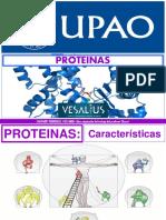 3 SESION - Proteinas