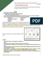 Gineco III FASE.pdf