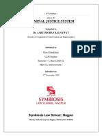 ESSAY ON CRIMINAL JUSTICE SYSTEM
