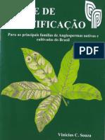 Chave de Identificaao Principais Familias Angiospermas Nativas Cultivadas Brasil