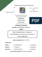 SADOK Djemaia.pdf
