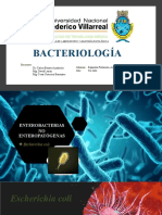 E. coli (No enteropatógena)