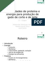 Necessidades de proteína e energia CT Exagro