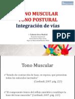 3.- Tono muscular y control postural