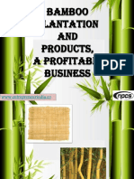 project-report-on-bamboo-and-bamboo-products