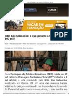 Sítio São Sebastião_ o que garante a CCS abaixo de 100 mil_