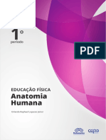anatomia-humana.pdf