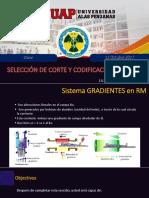 Clase Resonancia Magnetica Selección Corte