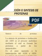 TRADUCCIÓN O SINTESIS DE PROTEINAS-2020_62e59a8b394b126eb67adc2377c606da.ppt