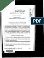 """Nation, Race, Culture. La trajectoire des mouvements noir et indigéne dans la société brésilienne."""""""