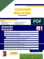 Grupo 3_Obligaciones Facultativas