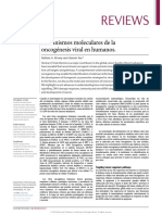 Molecular mechanisms of viral oncogenesis in humans (2)